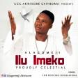 Alagomeji - Ilu Imeko (Proudly Celestial)
