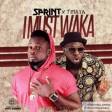 Sprint & Timaya – I Must Waka