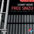 Dammy Krane – Free Sinzu