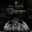 Tee Blaq – O Shapranpran
